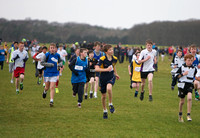 West Leinster Schools Cross-Country