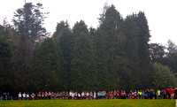 East Leinster Schools Cross-Country
