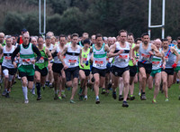 Dublin Masters' Cross-Country